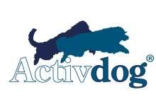 Возможности успешного выбора разнообразных товаров для активных собак